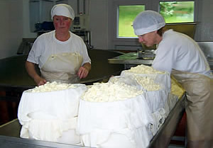 Organic Cheese Makers